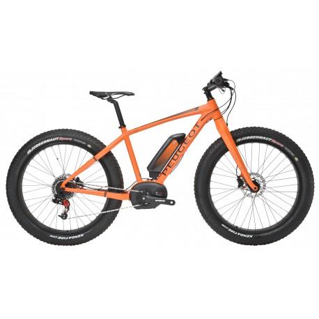 Peugeot EF-B01 Fat bike électrique