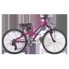 """Vélo enfant 24"""" Ridgeback Destiny (9-13 ans)"""