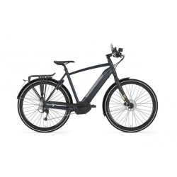 Gazelle CityZen Speed Bike électrique 45 km/h