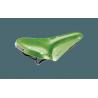 Selle Brooks B17 standard Apple Green