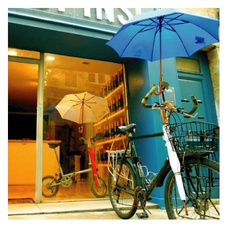 Porte-parapluie pour cycle