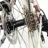 Vélo de ville Kalkhoff Scent Carry moyeu arrière