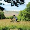 Vélo Gravel Genesis CDA 10 campagne