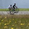 Vélo Fixie Genesis Flyer balade