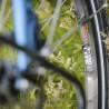 Vélo de randonnée Genesis Tour de Fer 30 jante Sun Ringle
