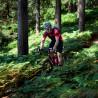 Vélo Gravel Genesis Fugio 20 chemin