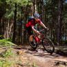 Vélo Gravel Genesis Fugio 20 descente