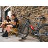 Vélo urbain Genesis Day One 20 ville