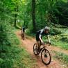 Vélo Gravel Genesis Croix de Fer 20 descente chemin