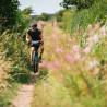 Vélo Gravel Genesis Vagabond chemin