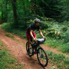 Vélo Gravel Genesis Vagabond forêt