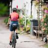 Vélo Gravel Genesis Vagabond arrière