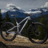 VTT Trek 29 Fuel EX 9.8 argent