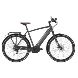 Speed Bike Gazelle CityZen Speed 380 homme