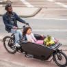 Vélo cargo électrique Urban Arrow Family ville