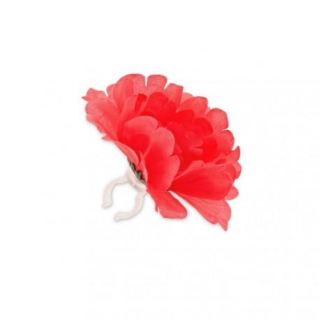 Basil flower pivoine à clipser