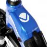 VTC électrique VDV AEB 890