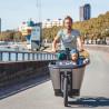 Vélo cargo électrique Carqon