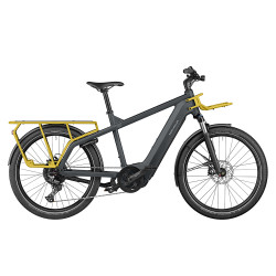 Vélo cargo électrique Riese&Müller Multicharger GT Light