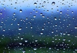 Bosch Nyon raindrops