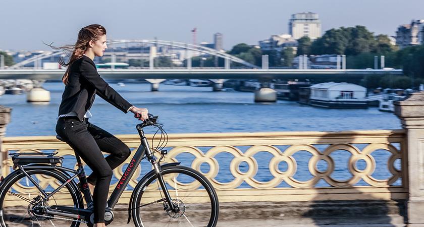 Le marché du Cycle en 2015