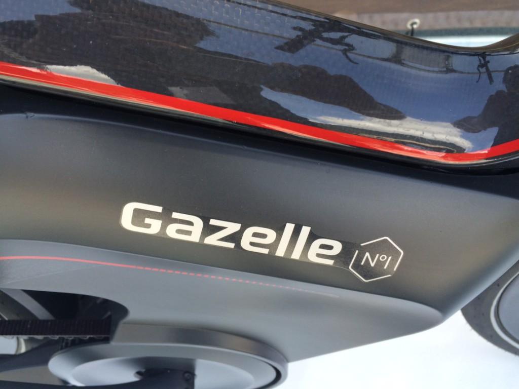 Détail logo Gazelle carbone