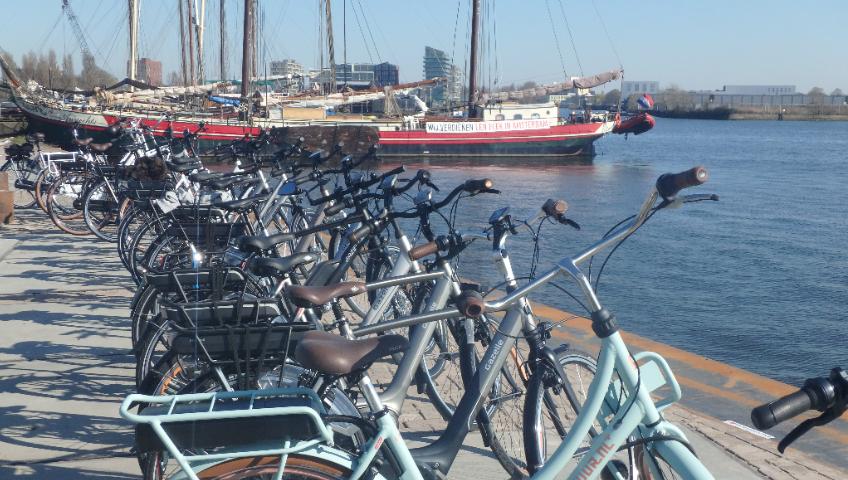 Gazelle chez Cyclable : le vélo hollandais