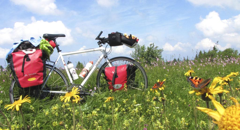 Vélo Genesis pour la randonnée