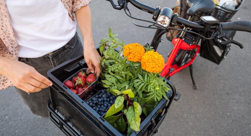 Vélo cargo au retour du marché